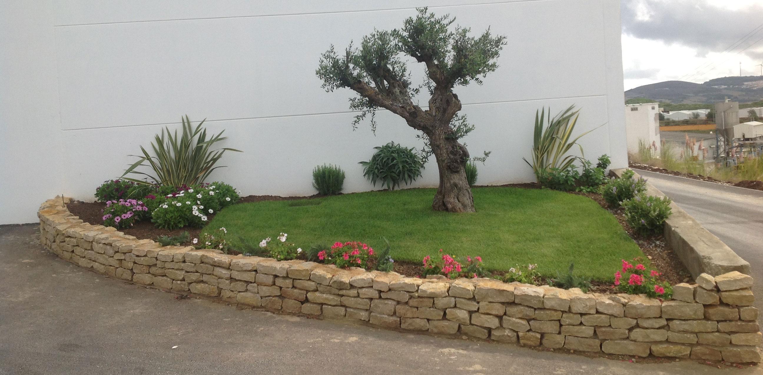 pedras jardins pequenos:Pequenos Jardins